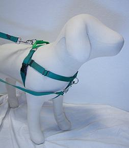"5/8"" Wide Medium  Freedom No-Pull Harness AND Training Leash"