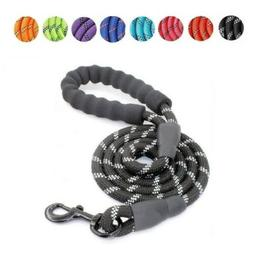 5ft Reflective Standard Nylon Dog Lead Leash Rope with Padde