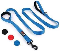 Primal Pet Gear Dog Leash 8ft Long - Blue - Traffic Padded T