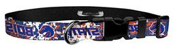 Moose Pet Wear Dog Collar – Boise State University Broncos