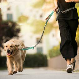 Adjustable Hands Free Dog Leash with Dual Bungees Waist Belt