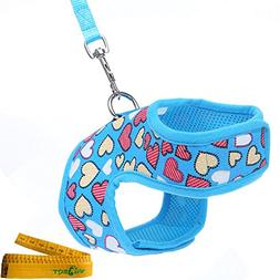 Wiz BBQT Bright Mesh Heart Printed Dog Cat Pet Vest Harness