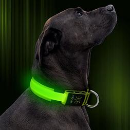 Illumifun LED Dog Collar, USB Rechargeable & Adjustable Nylo