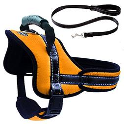 Mihachi Dog Harness with Leash with Handle No Pull No Chock