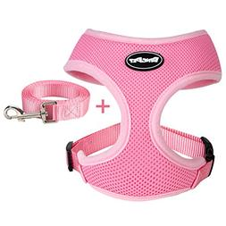 BINGPET Small Dog Harness and Leash - Soft Puppy Vest for Ca