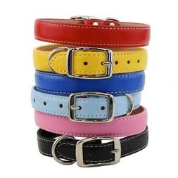 "Dover Court Dog Collar Color: Baby Blue, Size: 0.5"" x 10"""
