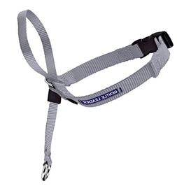PetSafe Gentle Leader Head Collar with Training DVD, LARGE 6