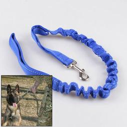 Hot Dog Leash Pet Training Lead Belt Elastic Bungee Traction