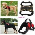 2 Way Coupler Double Multiple Dual Nylon Dog Pet Walking Lea