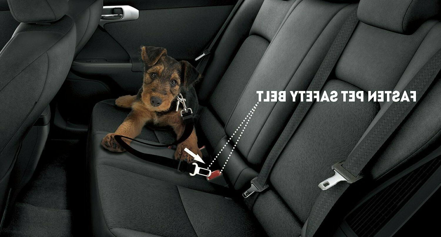 Pet Safety Adjustable Seat Harness Leash Travel