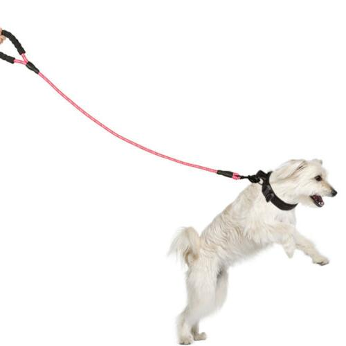 5FT Leash Lead Padded Handle Nylon Leash
