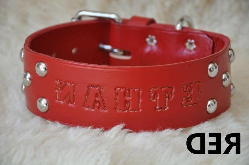 6' by Leather Dog Lead Personalized Amish Made