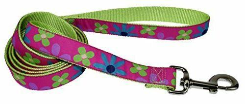 "Hamilton 5/8"" x 6'  Dog Leash With Retro Floral Patterned Ri"