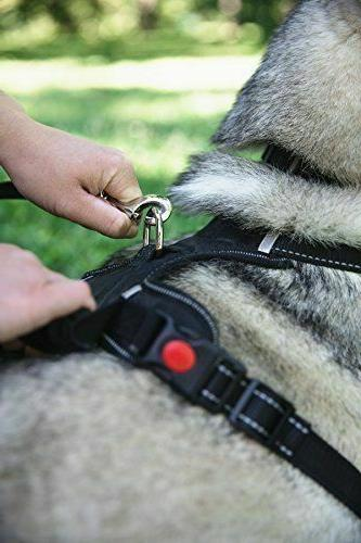 Adjustable Pull Dog QUALITY Harness W/ Handle, D-Ring & Leash