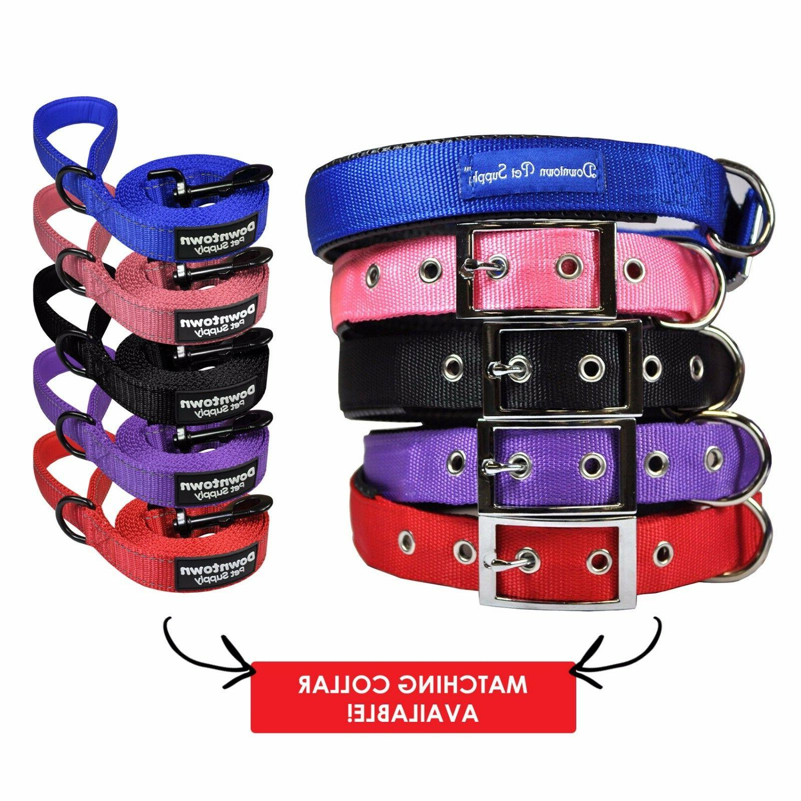 Best Leash with Strong Nylon