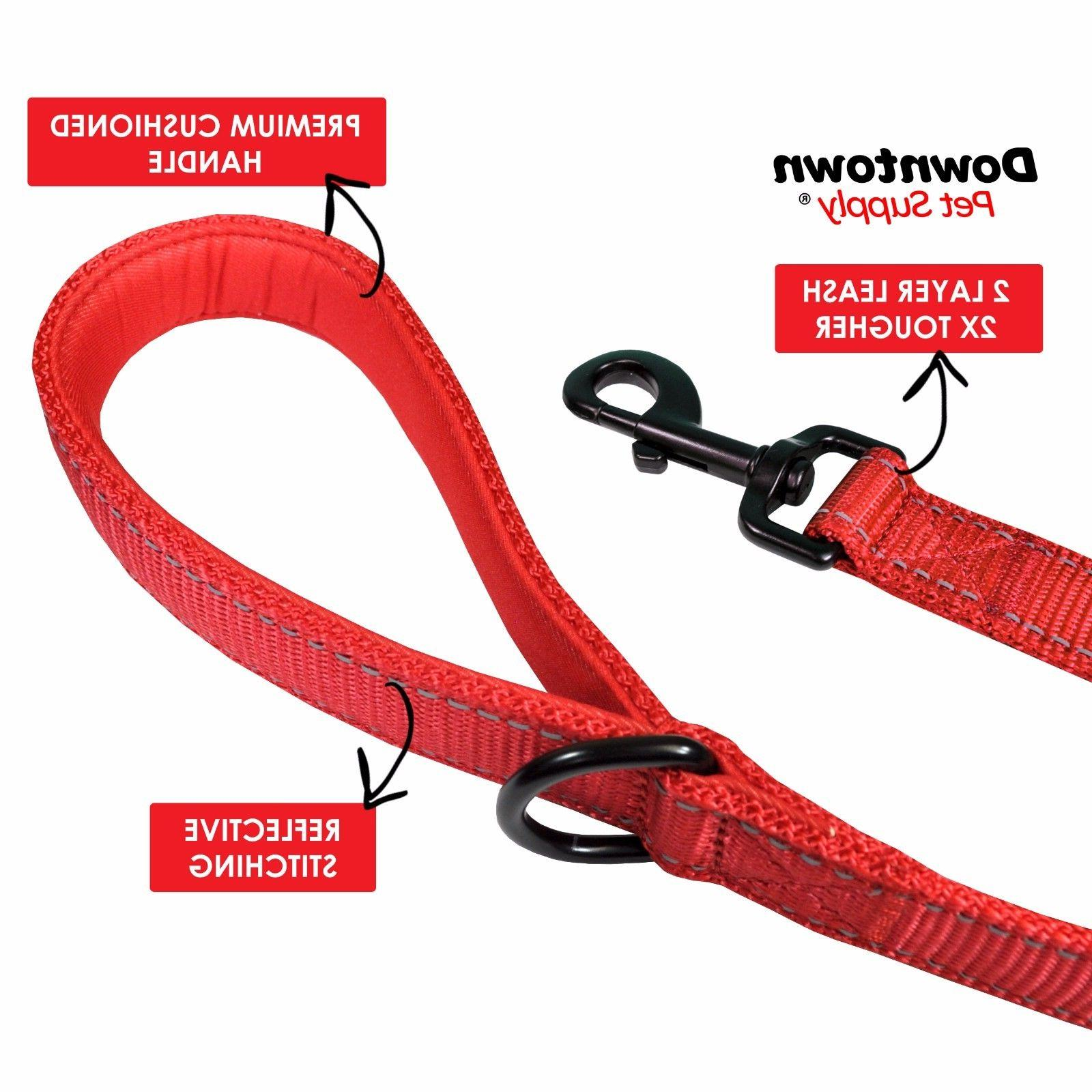 Best Dog Leash with Strong Nylon