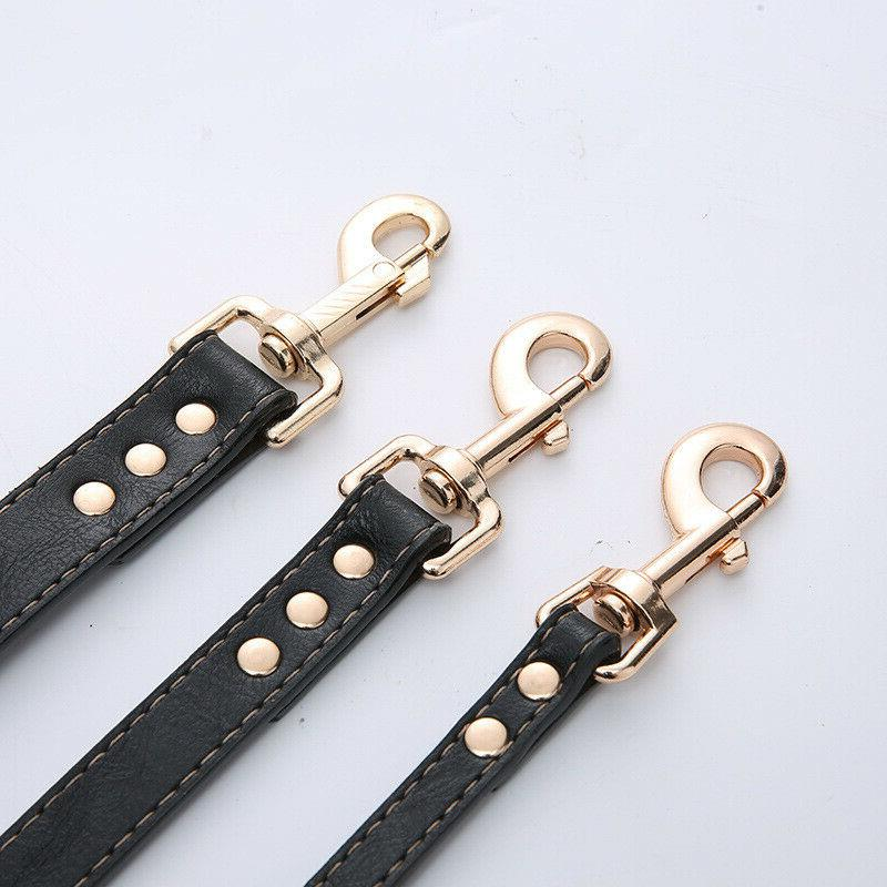 Black Dog Leash Handle and Dogs