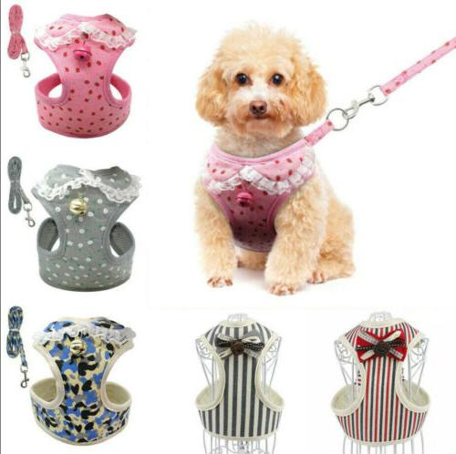 Breathable Pet and Leash Set Puppy Dog Cat