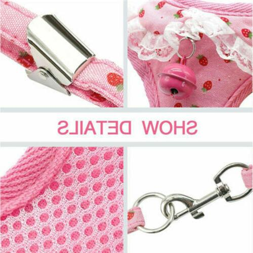 Breathable Mesh Pet and Leash Dog Cat