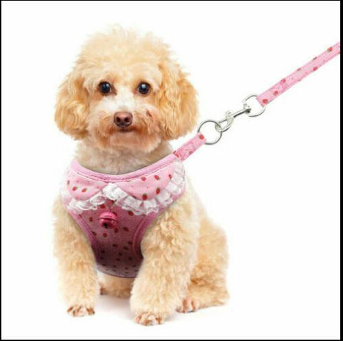 Breathable Small Pet Set Puppy Vest For Dog