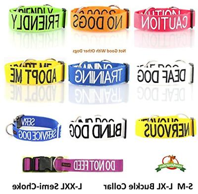 CAUTION Dexil Friendly Collars Color Coded Accident Dog