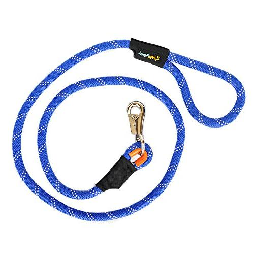 climbers mountain climbing rope dog