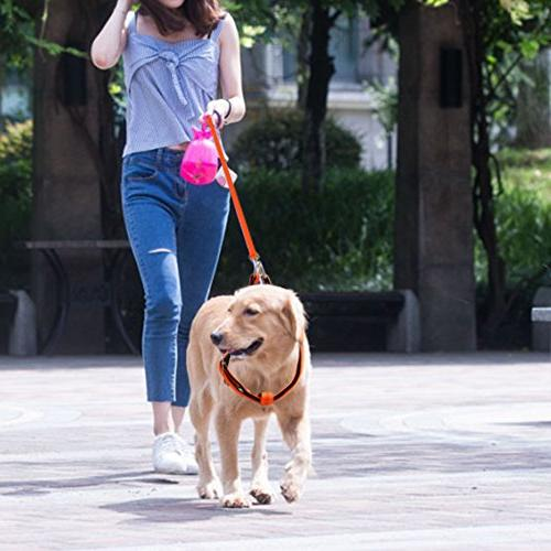 URPOWER Dog Dog & Anti-Twist for Medium Large Walking Running )
