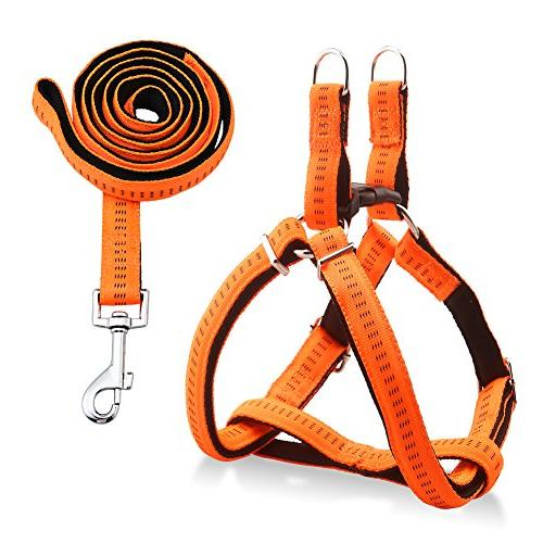 dog harness durable leash