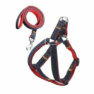 dog leash harness adjustable and durable leash