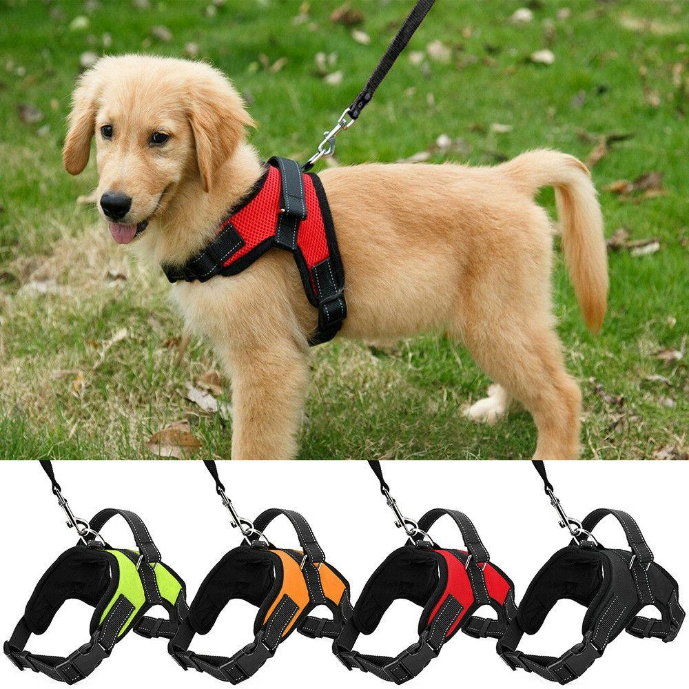 dog leash harness set adjustable durable