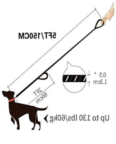 DOG for Dogs 2 Handles Training Rope