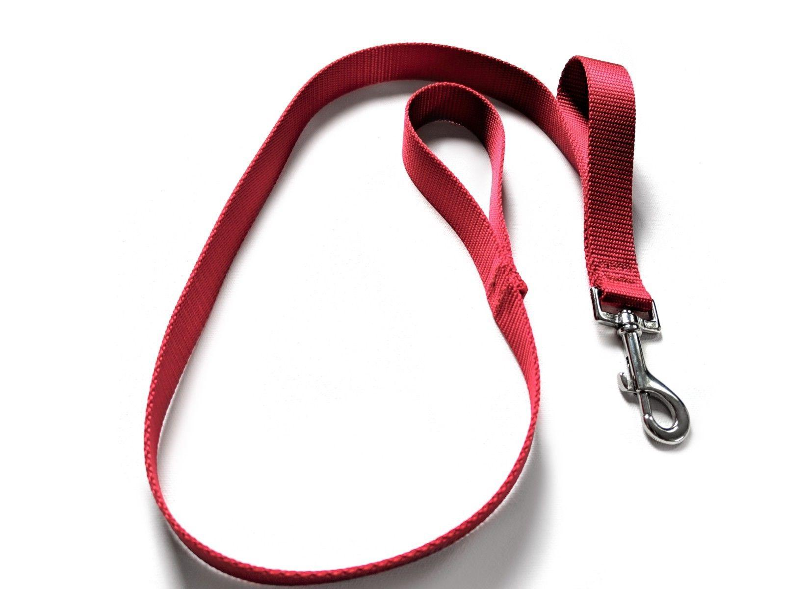 Double Handle Dog Leash Colors Made Shipped