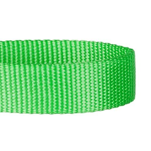 """Blueberry Pet 7 Colors Durable Classic Leash 5 ft x 5/8"""", Neon Green, Small, Nylon Leashes"""