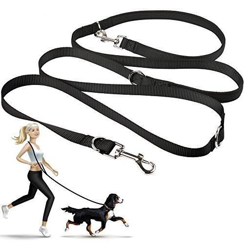 hands dog leash