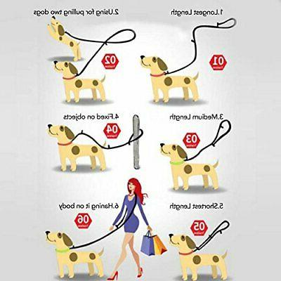 Hands Dog JKC Dog Leads, 9.8ft