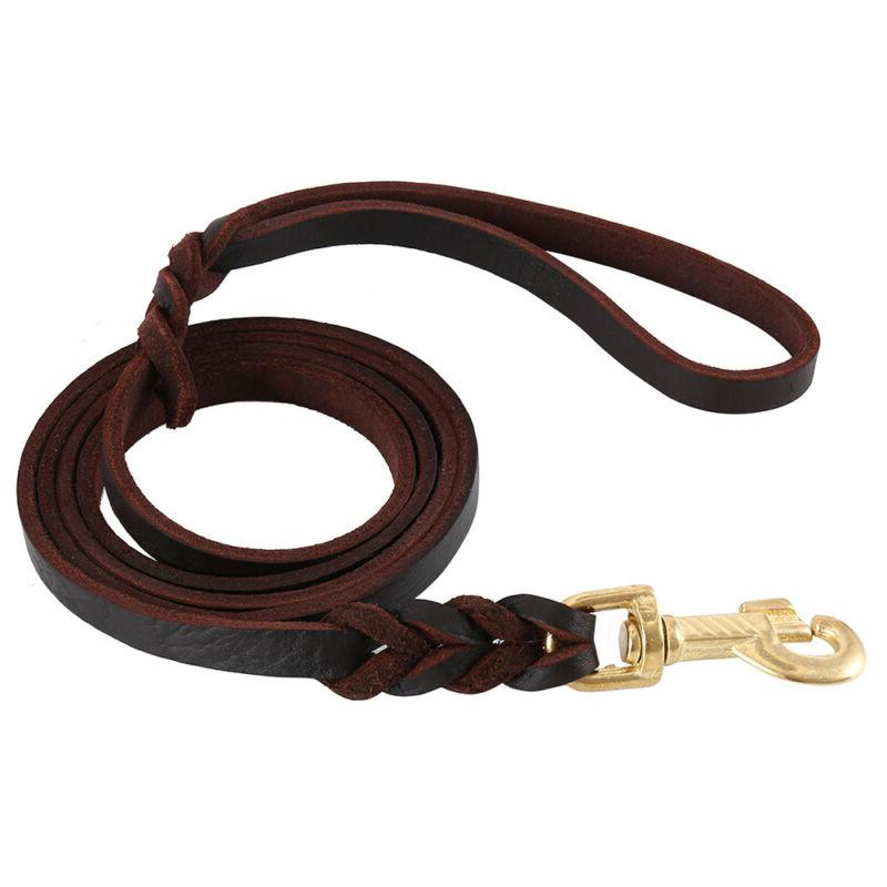 Heavy Dog Leash Training and Walking for German