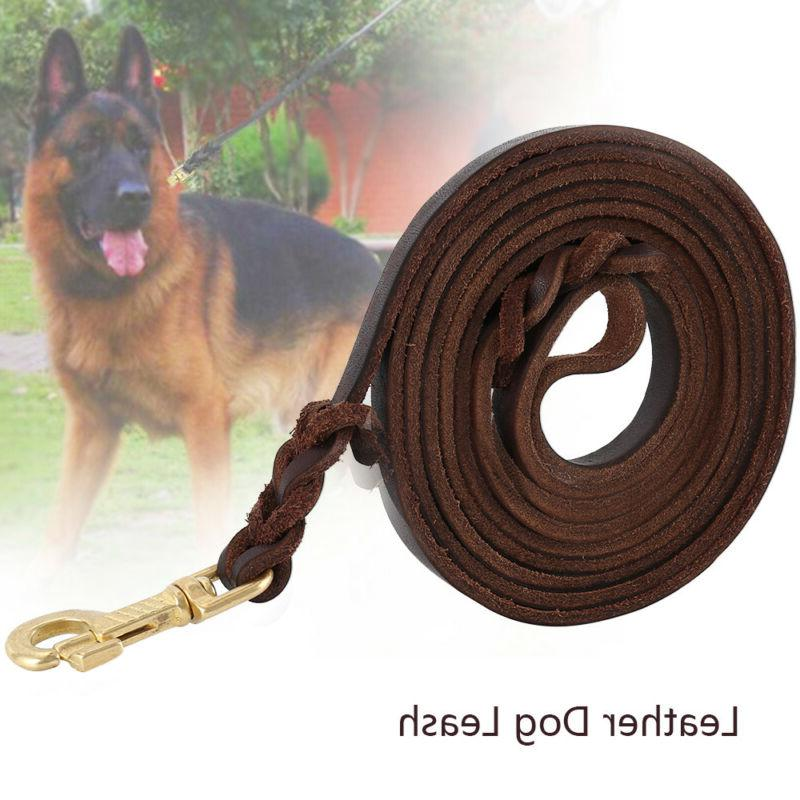 heavy duty braided leather dog leash training
