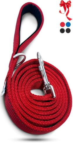 heavy duty dog leashes for large dogs