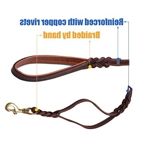 FOCUSPET Dog Leash with Handles,Padded Traffic Handle Extra Control,6Ft Large Dogs