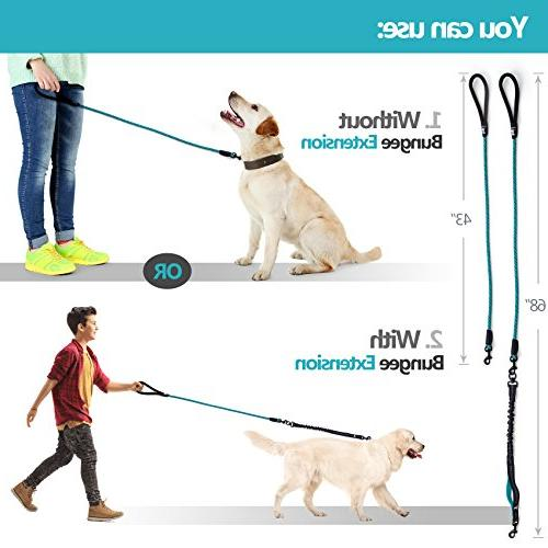 SparklyPets Heavy Duty Leash for Medium Dogs Bungee Leash – Suitable Dog and