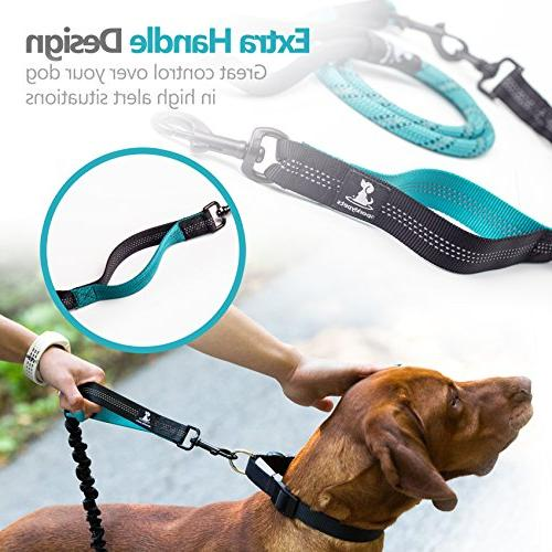 SparklyPets Leash for Large Medium Dogs Bungee for Shock - No Leash Outside Suitable Training and