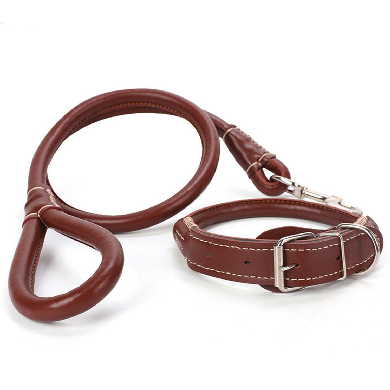 Large leather+Collar with Handle Walkin