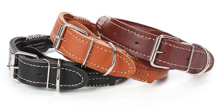 Large Heavy leather+Collar Handle for Walkin