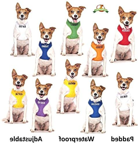 NO DOGS Color Coded 6 Dog By Your in Advance