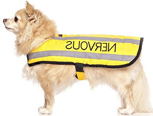 nervous yellow warm dog coats