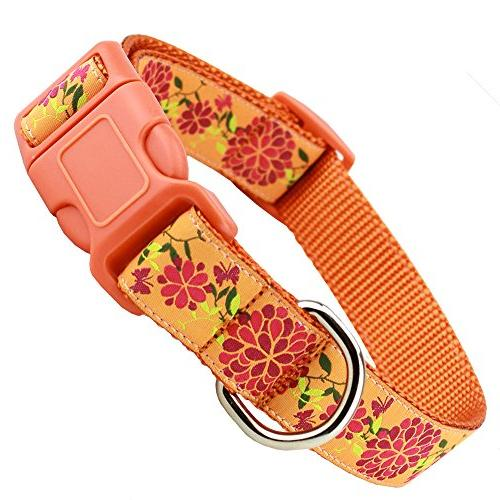 orange summer blossom floral dog