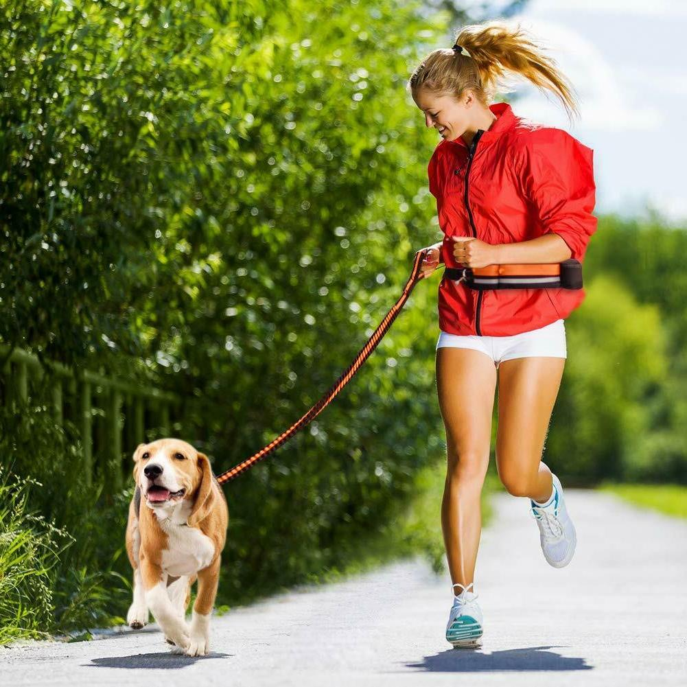 Hands-free Reflective Dog for Hiking with Pouch