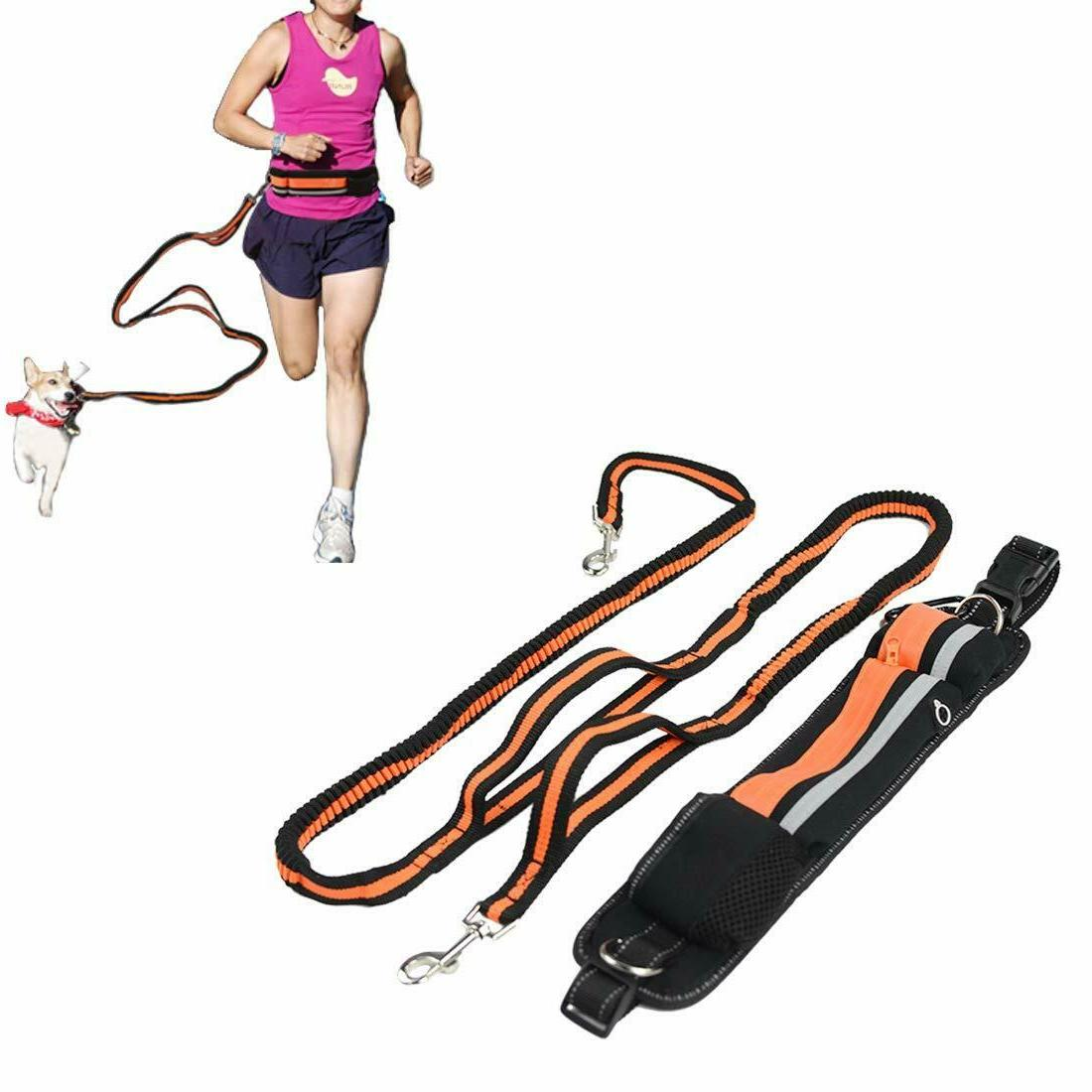 hands free reflective dog leash for walking