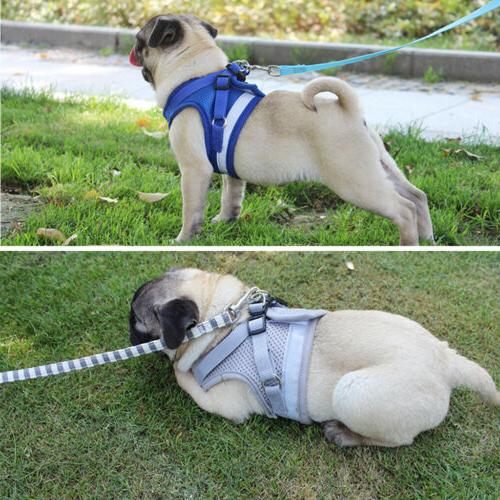 Breathable Small Dog Mesh harness chest XS-L