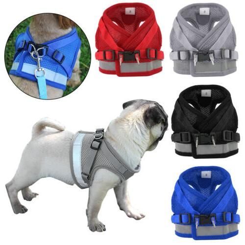 Pet Small Harness Mesh And Leash Vest Strap XS-XL